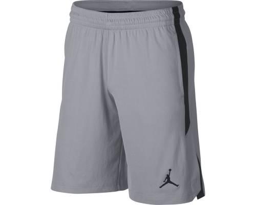 Short Nike Jordan Alpha Knit Gris / Noir