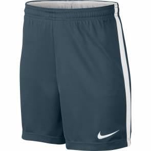 Short Nike Academy Dry Bleu Spatial / Blanc