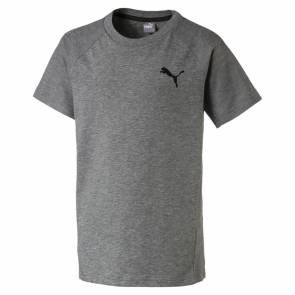 T-shirt Puma Evostripe Move Gris